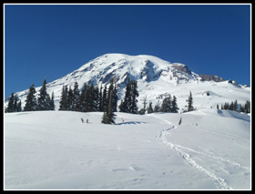 Mt. Rainier From Mazama Ridge