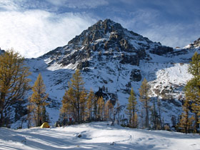 Black Peak & Larch Trees